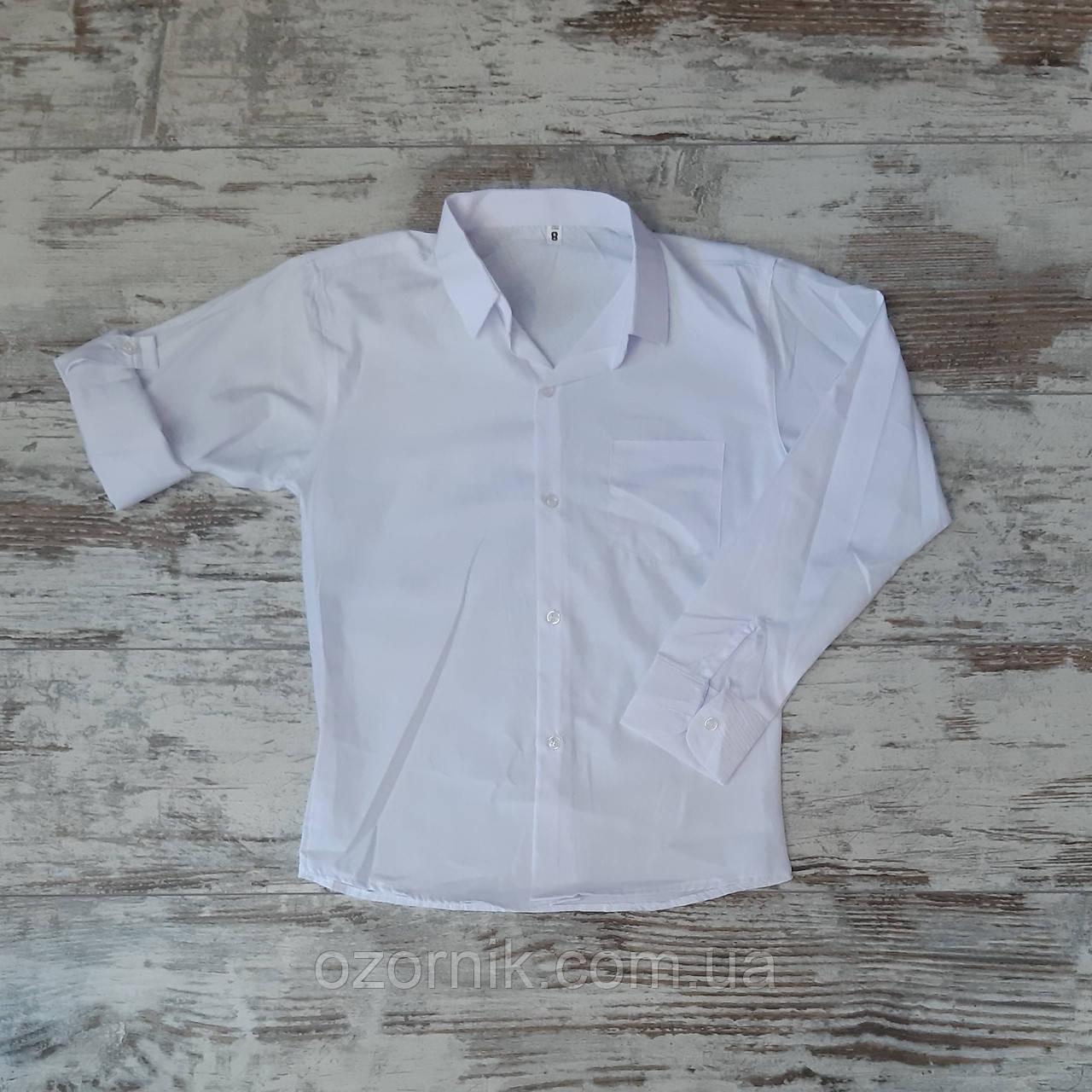 Оптом Рубашка Белая для Мальчиков 5-8 лет