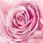 Салфетки бутон розы Марго 20шт  33х33 см