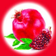 Гранат / Pomegranate 10 мл, 0 мг/мл, 50PG - PUFF Жидкость для электронных сигарет (Заправка)