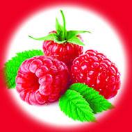 Малина / Raspberry 10 мл, 0 мг/мл, 50PG - PUFF Жидкость для электронных сигарет (Заправка)