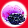 Чернослив / Prune 10 мл, 0 мг/мл, 50PG - PUFF Жидкость для электронных сигарет (Заправка)