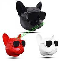 Bluetooth колонка Aerobull DOG Head Big