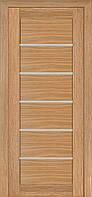 Двері міжкімнатні TERMINUS Modern модель 137