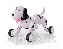 Робот собака Happy Cow на радіокеруванні Smart Dog чорний (HC-777-338b)