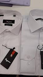 Рубашка мужская Sigmen модель SDK7387 белая