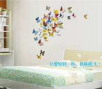 Набор декоративных бабочек 3D  (разноцветные)