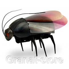 Животные жук люминисцентный 775 (930308)