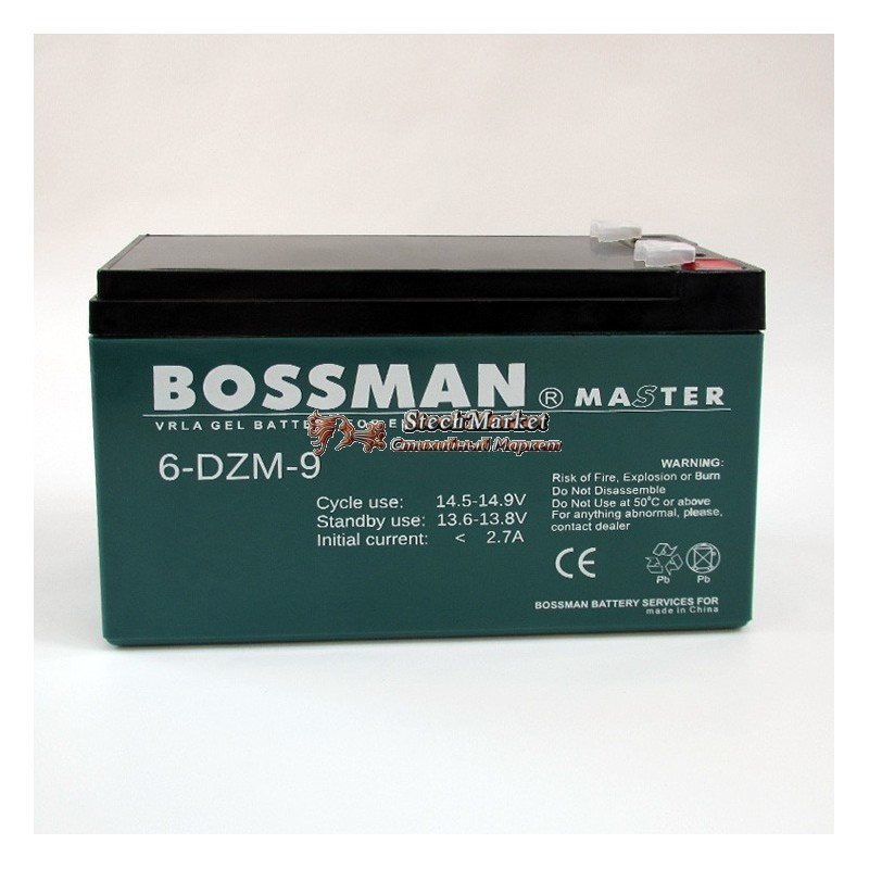 Гелевый аккумулятор Bossman Master 6DZM9 - GEL 12V 9Ah