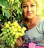 """""""Виноград Сервис Белецких"""" -  Ваш надёжный питомник сертифицированных привитых саженцев винограда !"""