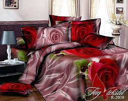 Двуспальный комплект постельного белья - ренфорс R2038