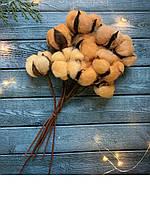 Гілка бавовни (10 головок) на гнучкій основі персикового кольору