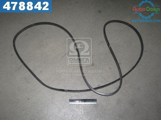 Ремень В(Б)-3000 (производство  ЯРТ)  В(Б)-3000