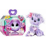 Little Live Питомец сюрприз няшка потеряшка фиолетовые Scruff-a-Luvs plush mystery rescue pet, фото 7