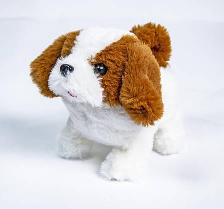 СОБАКА В ПЕРЕНОСКЕ CUTE DOGGY S109, фото 2