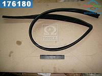 ⭐⭐⭐⭐⭐ Уплотнитель стекла опускного ВАЗ 2109 передний левый (производство  БРТ)  2109-6103293Р