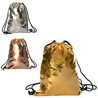 Сумка рюкзак для обуви на затяжке 42*32 см