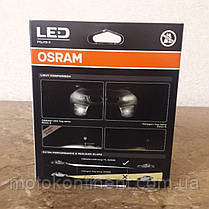 H8/H11/H16 OSRAM FOG LAMP светодиодные лампы H8/H11/H16 в ПТФ  OSRAM LEDriving Retrofit FOG LAMP H10 67219CW, фото 2