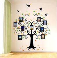 Интерьерная наклейка на стену - Дерево с фоторамками (отличное качество), фото 1