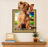 Інтер'єрна наклейка Щеня 3D 50х40см, фото 3