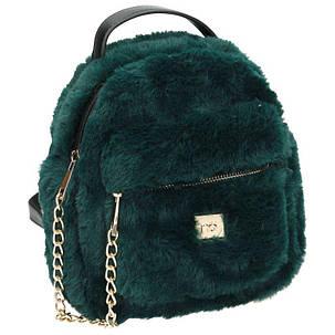 Рюкзак женский NOBO Зеленый (NBAG-H2420-C008), фото 2