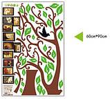 Интерьерная наклейка  на стену Дерево коричневое с фоторамками  (отличное качество), фото 5