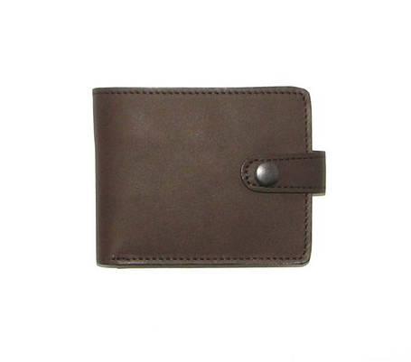Мужской кожаный кошелек DNK Leather Коричневый (DNK Full Purse col.F), фото 2