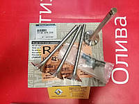 Комплект выпускных клапанов (комплект 4 шт) Renault Master 2 1.9 dCI F9Q (Original 7701476256), фото 1