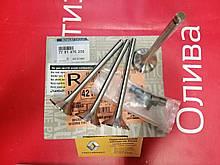 Комплект випускних клапанів (комплект 4 шт) Renault Clio 2 1.9 dCI F9Q (Original 7701476256)