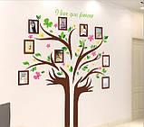 Декоративная  наклейка  - дерево с фоторамками  (172х145см), фото 2