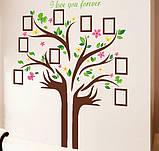 Декоративная  наклейка  - дерево с фоторамками  (172х145см), фото 3
