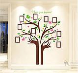Декоративная  наклейка  - дерево с фоторамками  (172х145см), фото 4