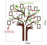Декоративная  наклейка  - дерево с фоторамками  (172х145см), фото 5