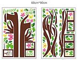 Декоративная  наклейка  - дерево с фоторамками  (172х145см), фото 8