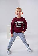 Детские спортивные штаны Ливен 4501 на мальчика 4-7 лет 110 меланж