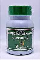 Чандрапрабха Вати 60 таб, гинекология, токсины, опухоли, фото 1