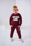 Детский свитшот Арон 4484 на мальчика 4-7 лет 116 слива