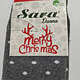 Носки махровые высокие с мишкой 36-41 размер, фото 7