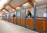 Денники для лошадей стационарные, фото 2