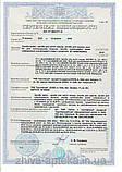 """Шампунь """"АЛЕНКА"""" с экстрактом ромашки, 250г, фото 2"""