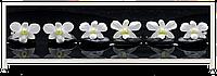 Экран под ванну «АРТ», Орхидея на черном 2, 180см.