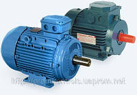 Электродвигатель АИР 100 L6  2,2кВт/1000об/мин