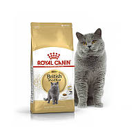 Корм Royal Canin British Shorthair Роял Канин Британская короткошерстная 4 кг