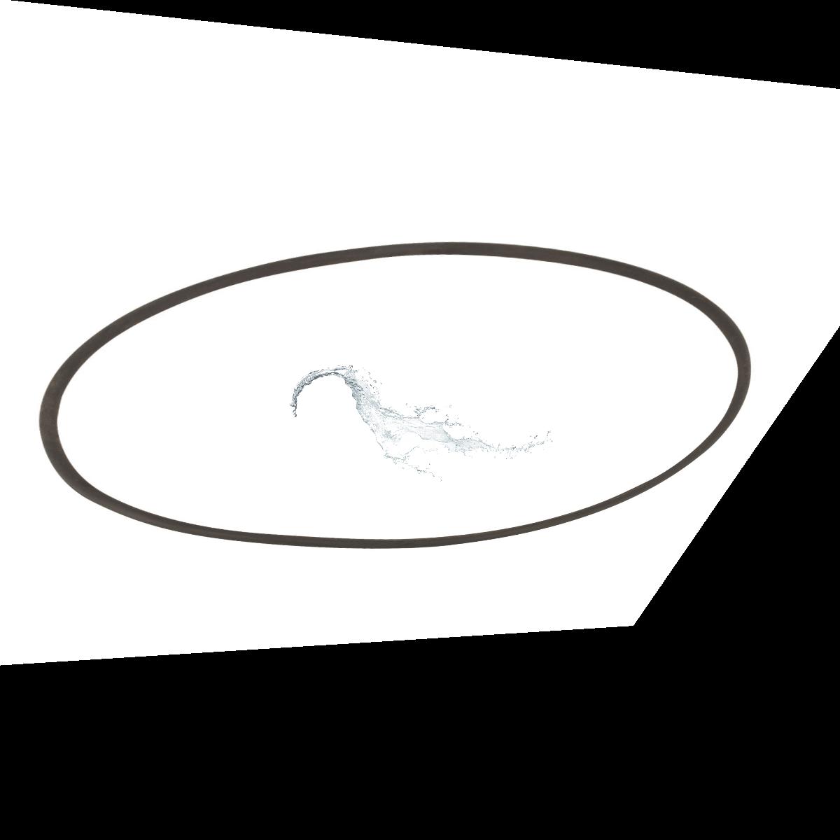 Прокладка-кольцо люка смотрового фильтра SSB Kripsol RSS120.R/ R1202120.4 (R3000202)