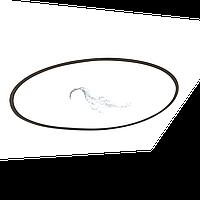 Прокладка-кольцо люка смотрового фильтра SSB Kripsol RSS120.R/ R1202120.4 (R3000202), фото 1