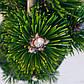 Pinus thunbergii Kotobuki, фото 3