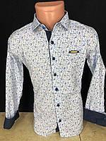 """Рубашка подростковая школьная Normani на мальчика 5-8 лет """"EMRE"""" купить недорого от прямого поставщика"""