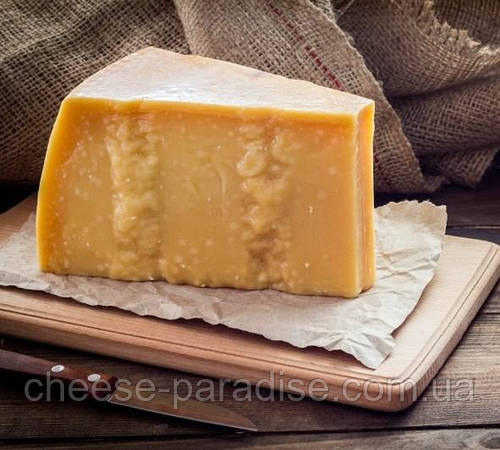 Cheese Paradise
