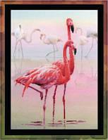 0012 РТ Фламинго