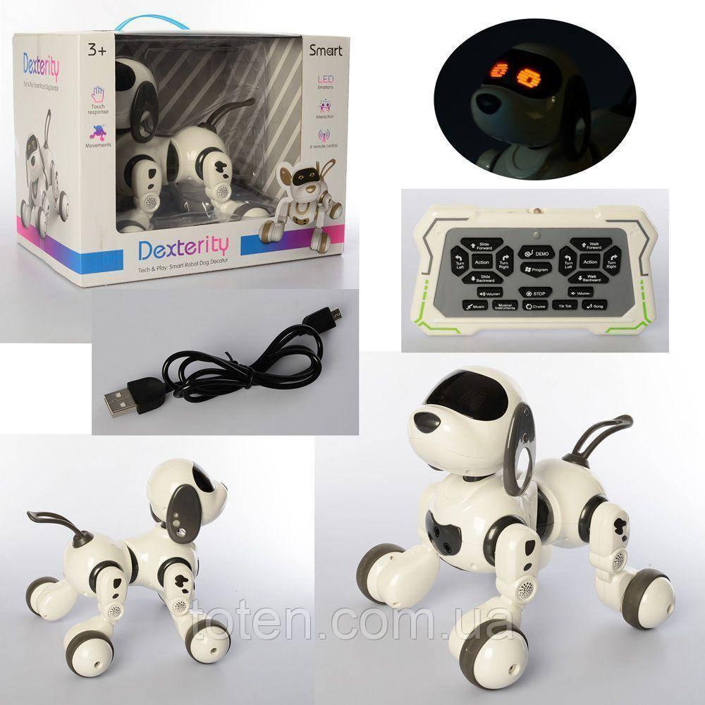 Радиоуправляемая робот-собака 28 см, звук, светится, ездит, танцует, USBзарядное 18011
