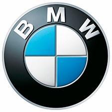 Автомобильные коврики EVA на BMW